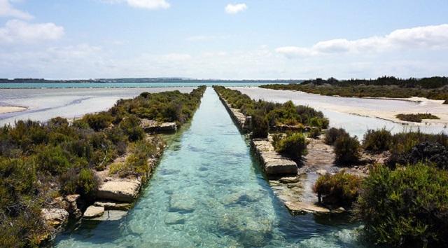 Estany Pudent, ¡una laguna con mucho que descubrir en el norte de Formentera!