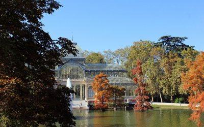 Parque del Retiro de Madrid, ¡una visita imprescindible en tu viaje a la capital!