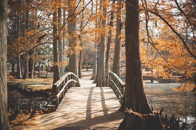 Parques naturales, una oportunidad de disfrutar del aire libre post covid