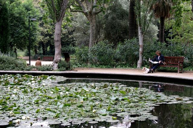 Parque del Turó, un rincón verde de Barcelona con mucho para descubrir